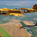 Air to Air Shoot: P-40N Warhawk & P-51D Mustang