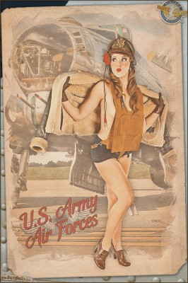 Pinups - Kayla - Army Air Force Pinup