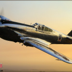 P-40C Warhawk - Air to Air