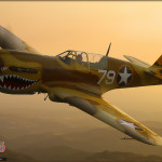 P-40N Warhawk - Air to Air