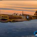 Air to Air - P-40N Warhawk
