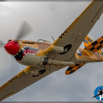 Planes of Fame Airshow 2017 - P-40N Warhawk